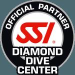 SSI Diamond Facility