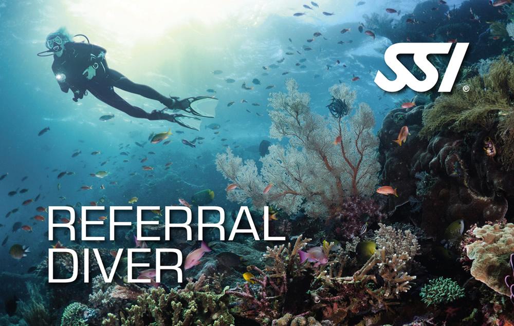 SSI Referral Diver