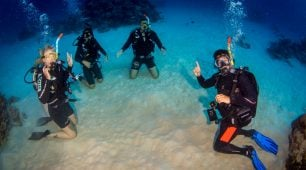 Learn to dive course