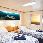 Reef Encounter - Stateroom
